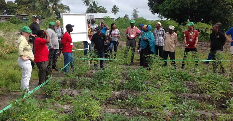 Field visit in Zanzibar provides insights to Akilimo's work on the field