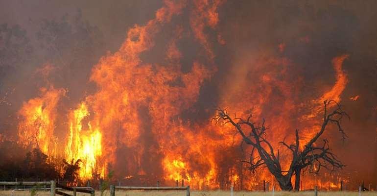 Bush Fire Destroys Rice Farms In Northern Regions