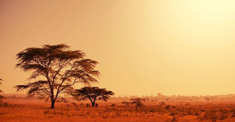 Grasslands can store carbon reliably under increasingly hot and dry climates. - Source: Shutterstock
