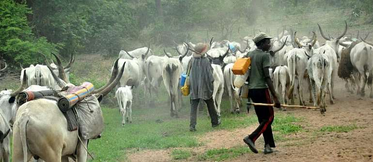 Will Herdsmen Plunge Nigeria Into Food Crisis?