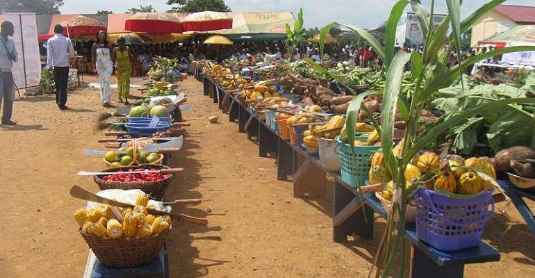 Farmers' Day: Demand Accountability, Good Governance — NDC Urge Farmers