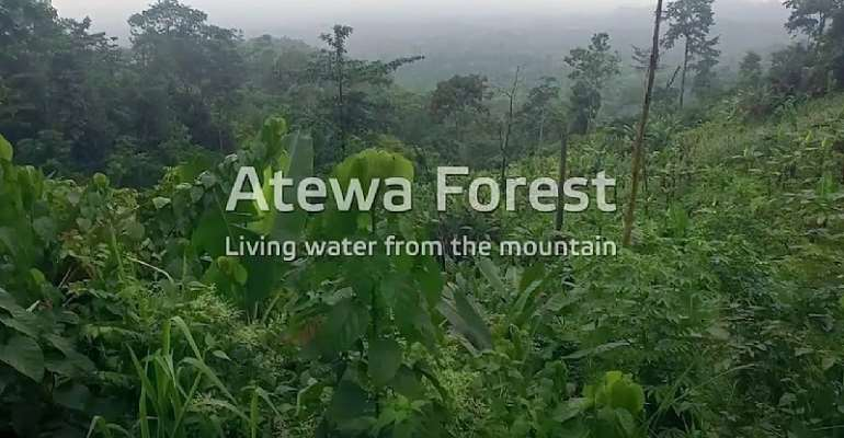 God Almighty: Please Let Akufo-Addo Ban All Mining In The Atewa Forest Reserve -  And Declare It A National Park. Now, Not Tomorrow!