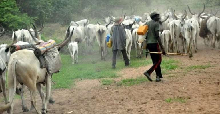 Coalition Rubbishes Death Report Of Four Fulani Herdsmen In Enugu