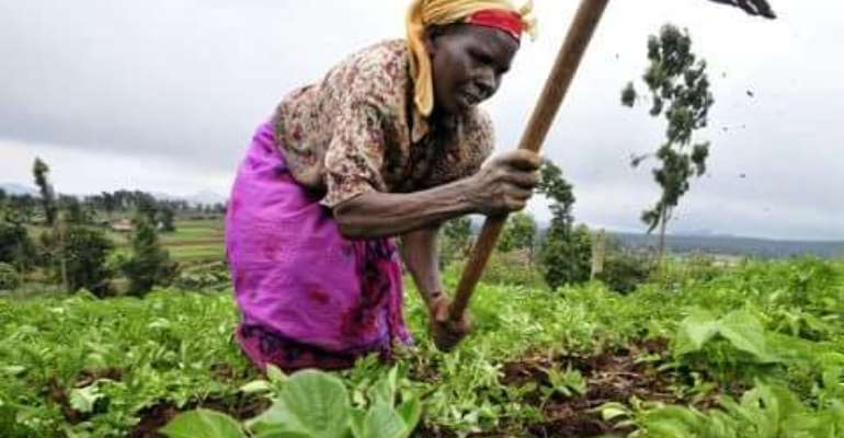 Applications Of Derivatives To Developing Agriculture