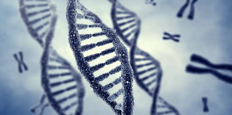 Why It's Important To Know Your Genotype And Blood Group Compatibility