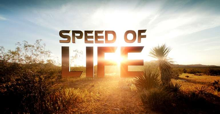 Whom You Know, Determines Your Speed In Life