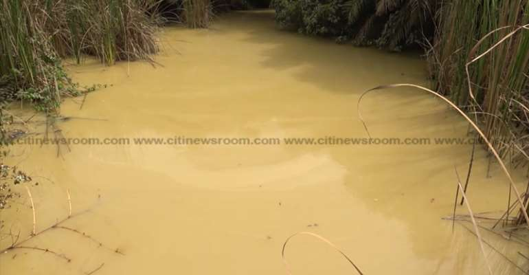 Gold, bazookas and destruction: Flush out politicians, chiefs & foreigners in galamsey!