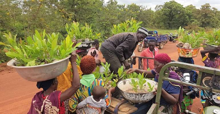 Greening agricultural produce for people and the planet: the story of a Social Entrepreneur in Ghana