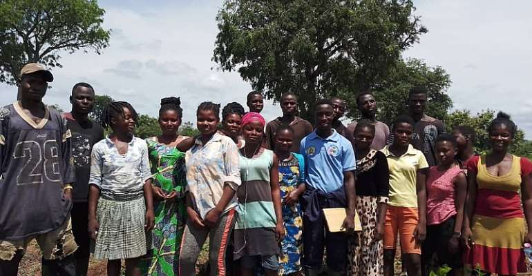 COVID-19: Time To Increase Ghana's Agricultural Investment—Farmer To Gov't