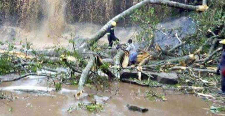 Kintampo Again!! a Rainstorm, a Fallen Tree & a DISASTER