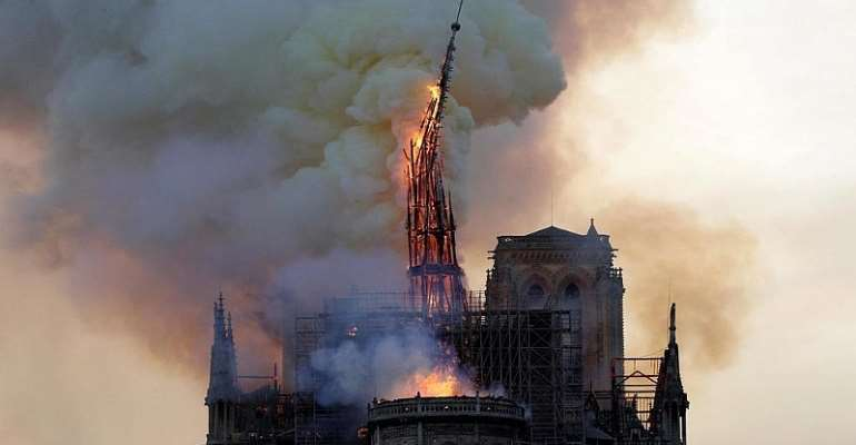 First oak trees chosen to repair roof, spire of fire-damaged Notre Dame