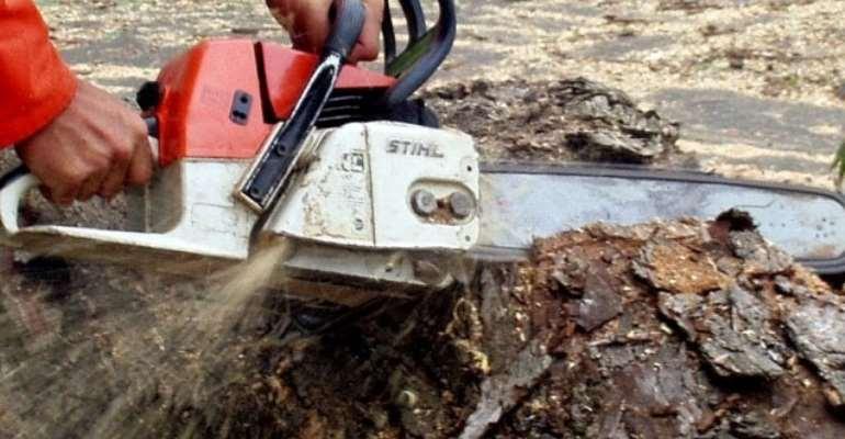 PURC Accuses Chainsaw Operators Of Dumsor