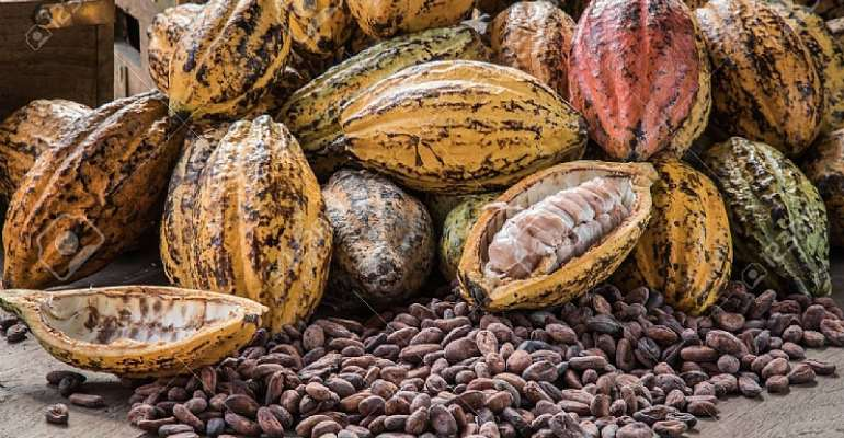 Ghana likely to lose top cocoa producer slot – Lecturer