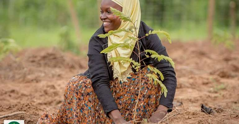 A call for a National Tree Planting Day and a man's journey to plant 20 million trees in Ghana.