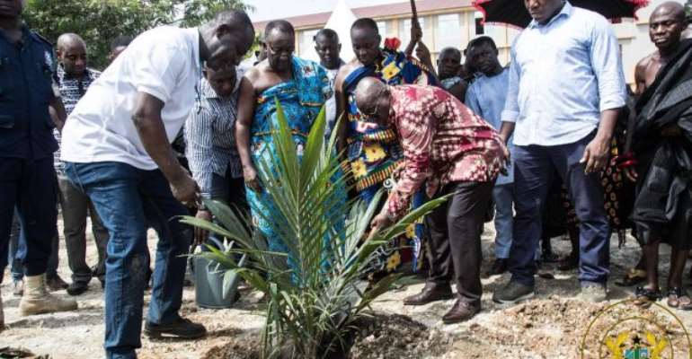 President Akufo-Addo says government is taking the necessary steps towards the establishment of the relevant institution to regulate tree crop development in the country.