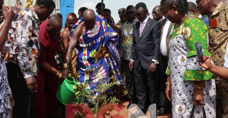 Otumfuo watering a planted tree at the construction site