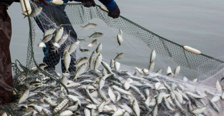Ban On Fishing Starts Today – Minister