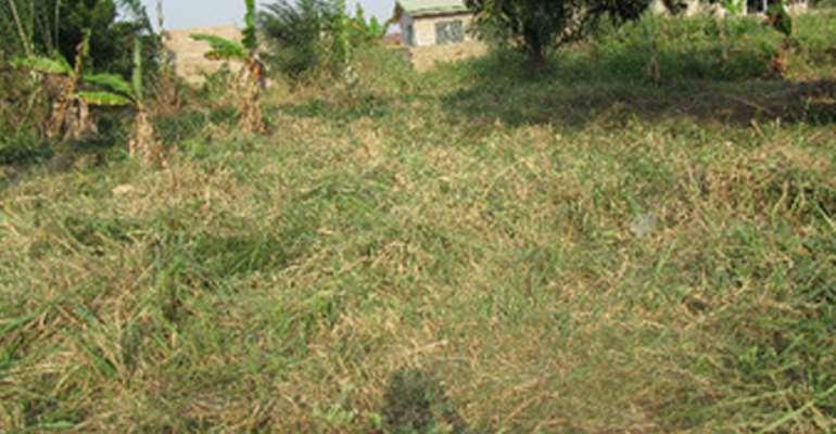 Mobole Residents Warn Buyers Against Land Fraudsters