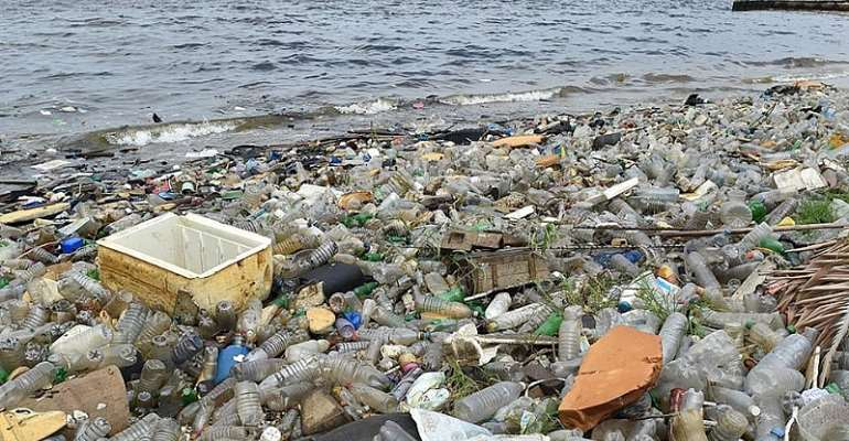 Our Coastal Waters Are Gradually Becoming Dead Zones Due To Poor Sanitation