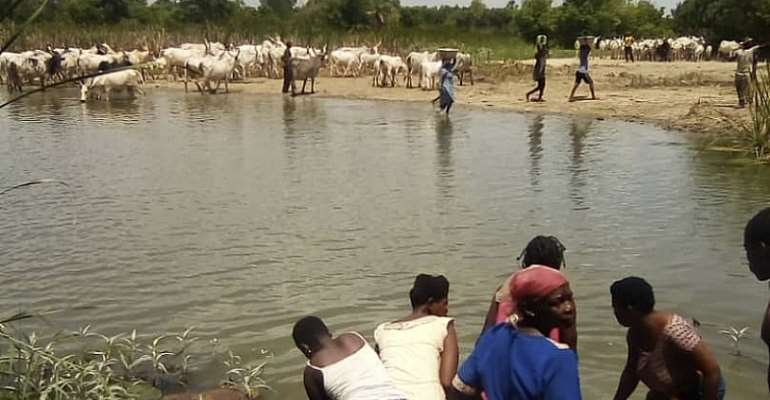 Neglect Of Water Treatment Plant Causing Some Communities In Southern Volta To Run Double Track With Animals For Water.