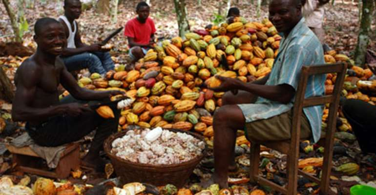 Insurance For Cocoa Farmers – An Idea Whose Time Has Come