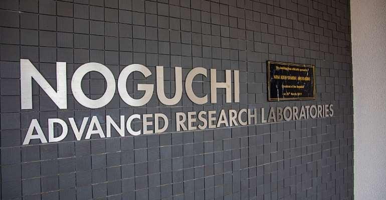 COVID-19: Noguchi Test All Samples
