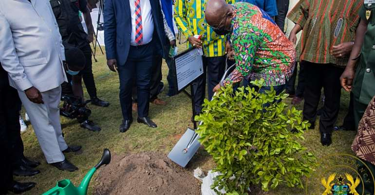"""""""Green Ghana Day not one-off event; let's nurture trees to maturity"""" – Akufo-Addo"""
