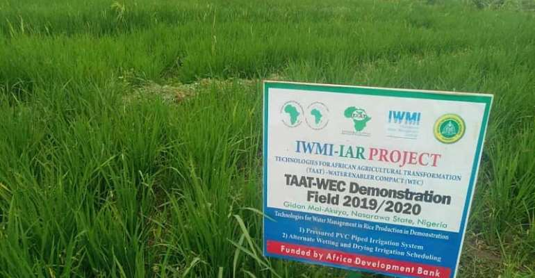 AfDB excites Nigerian youth with new irrigation technologies for dry season farming