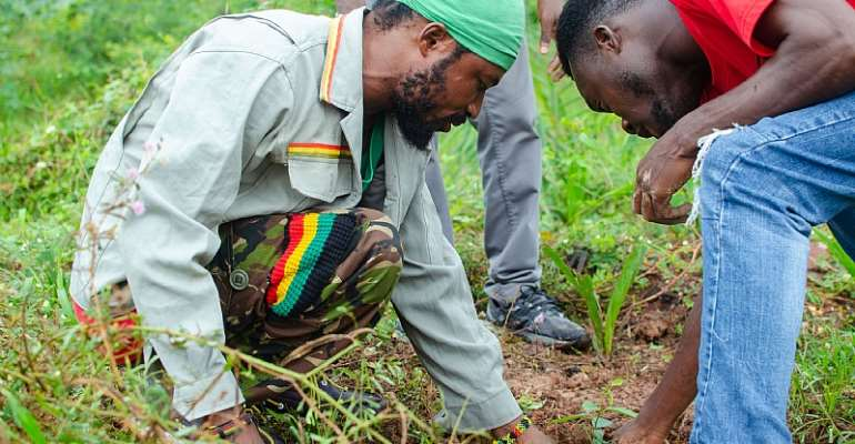 We're aware of your nonchalant attitude, but don't let it cause stray animals to destroy the trees — Ras Tafari to  EKMA and STMA
