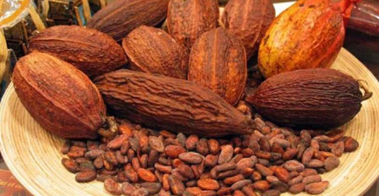 Some cocoa beans