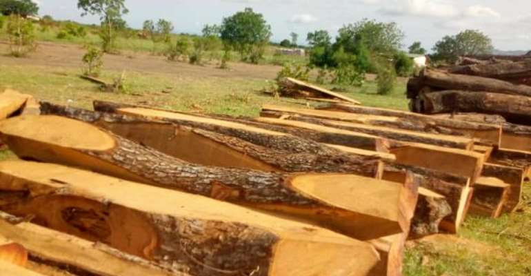 Rosewood Trade Booming In Spite Of  Ban –Research Scientist