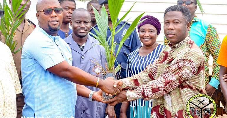 Prestea Huni-Valley MCE Distributes Over 73,000 Palm Seedlings To Farmers