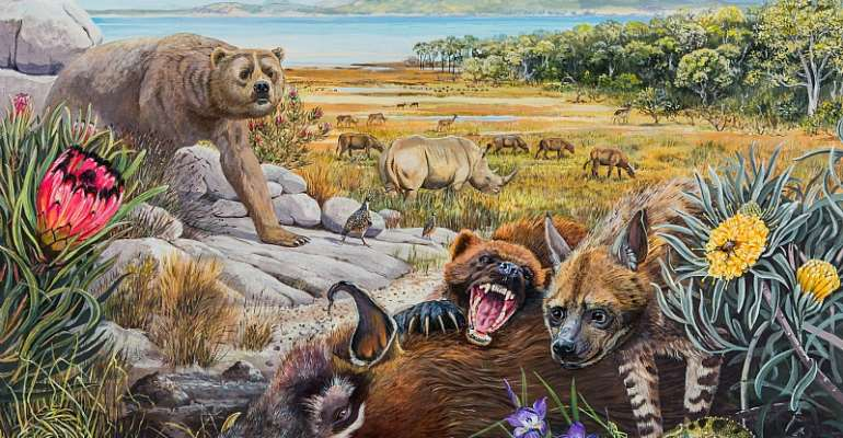 What South Africa's West Coast might have looked like 5 million years ago. In the foreground, a giant wolverine feeds on a pig while chasing away a primitive hyena. - Source: Maggie Newman, Geological Society of South Africa and the University of the Witwatersrand