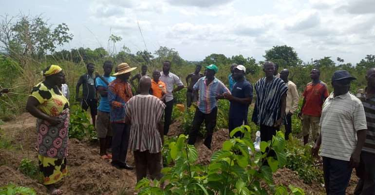GEPA Train Yam Farmers To Boost Production For Export