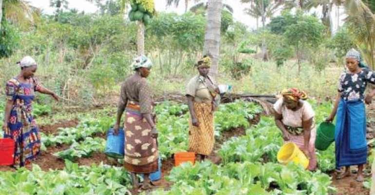 Women farmers make input into Assemblies MTDPs