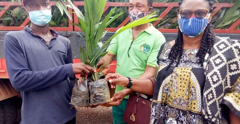 Government Delivers 20,000 Oil Palm Seedlings To Farmers