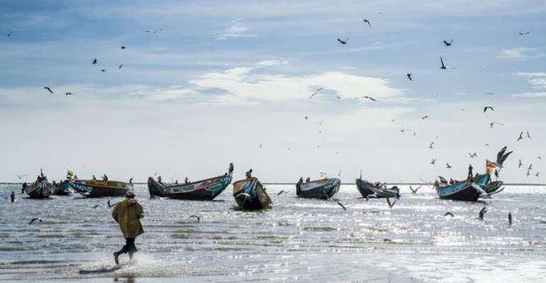 Bateaux de pêcheurs au Sénégal. - Source: Fabian Plock/Shutterstock