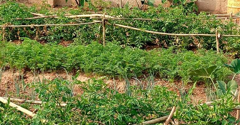 National Workshop On Agroecology And Climate Change Held In Techiman