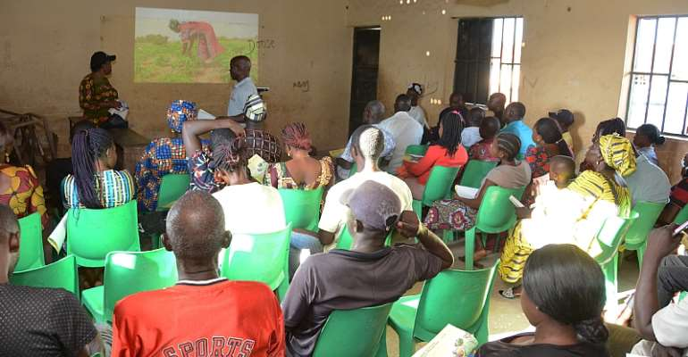 IITA: Leveraging Digital Tools To Scale Cassava Weed Management Recommendations To Farmers