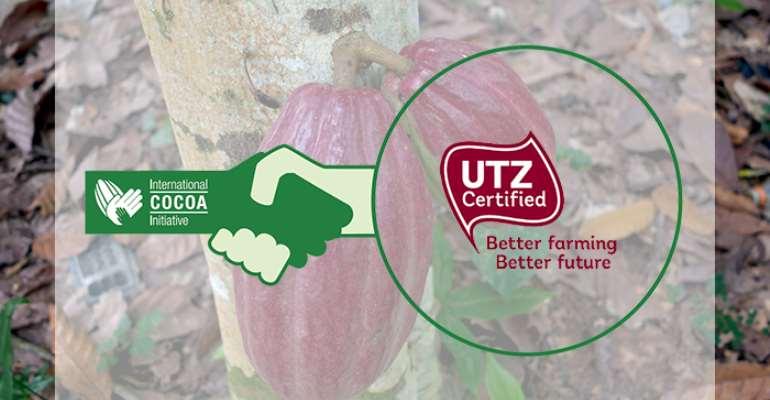 UTZ Joins The International Cocoa Initiative Geneva