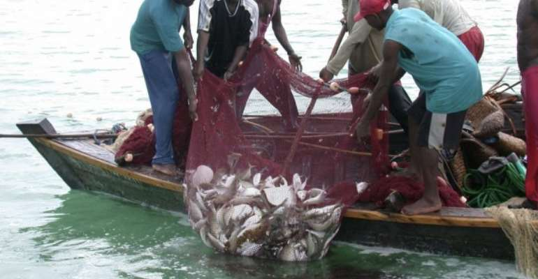 C/R: NPP Executives Sell Outboard Motors To Us – Fishermen Reacts To Akufo-Addo Claim