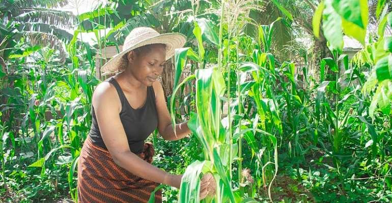 A young African farmer - Source: www.shutterstock.com