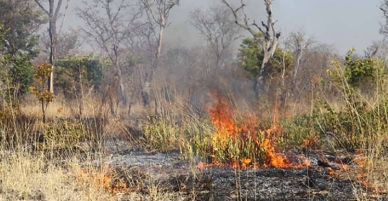 A late season fire in Bwabwata National park.  - Source: Conor Eastment