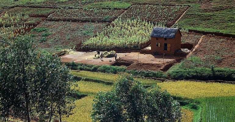 Farmhouse near Antananarivo, Madagascar.  - Source: DeAgostini/Getty Images