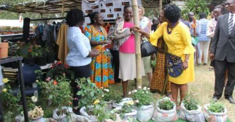 Ghana needs a national horticulture policy - STRATCOMM