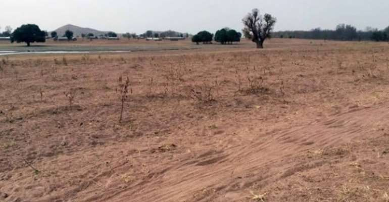 SADA to resurrect failed tree planting exercise