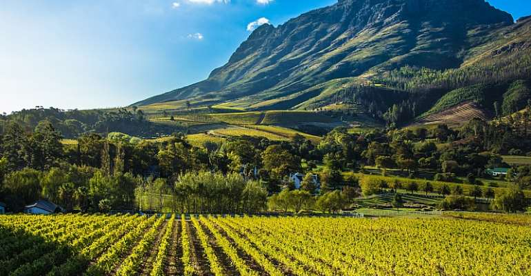 Land reform strategies portray the land as uniform, static and independent from its social-environmental context.  - Source: GettyImages
