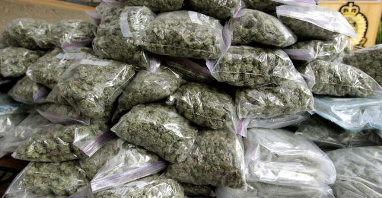 E/R: Police Chases Marijuana Farmers