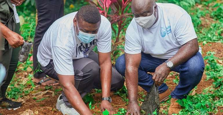 Ridge Nest Hotel initiates afforestation CSR project to promote eco-tourism in Ghana