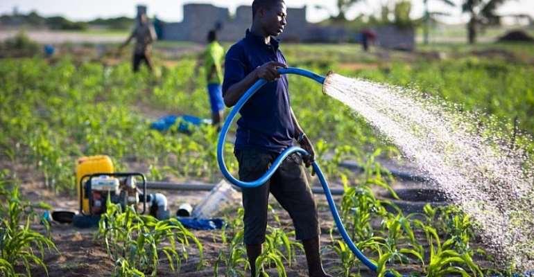 NDC Will Build Irrigation Dams To End Rain-Fed Agric – Haruna Iddrisu